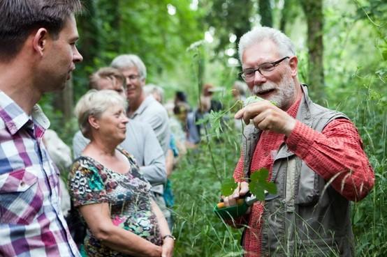 Goede kans terugkeer stadsecoloog in Haarlem