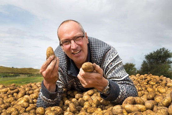 Zilte groente op Texel: 'Een wilde plant dresseren'