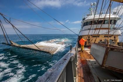 Vissers in Den Haag voor behoud pulsvisserij