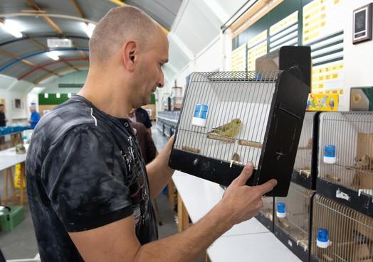 'Vogelvirus' trekt volle bak bij De Paradijsvogel in Zaandam