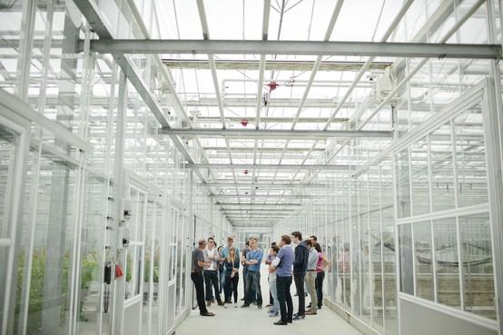 Steeds meer buitenlanders werken in West-Fries zaad