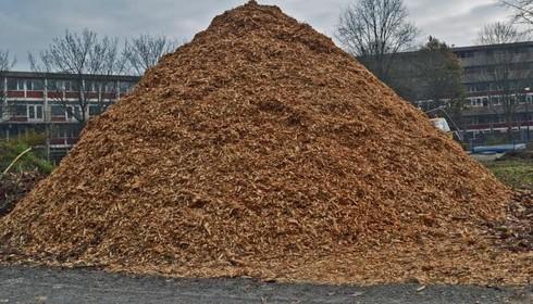 Nieuwe Brug: onderzoek naar komst van biomassacentrale op De Liede