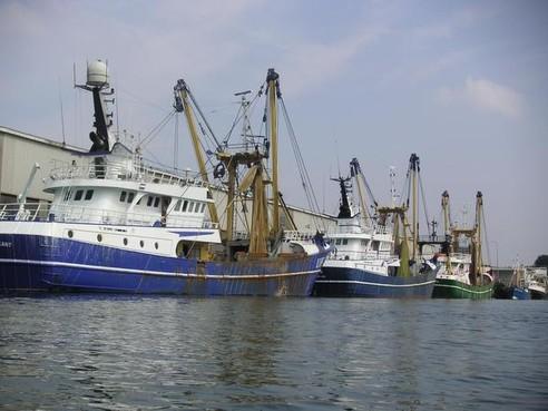 'Gemeenschappelijk Visserijbeleid succes'