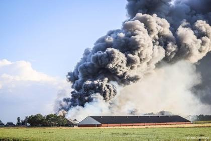 Circa 42.000 kippen omgekomen door brand
