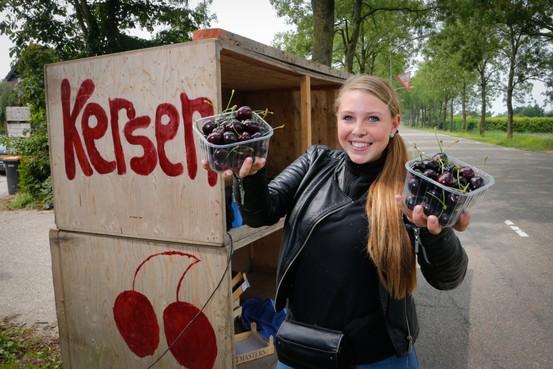 West-Friese kersen verleidelijk lekker
