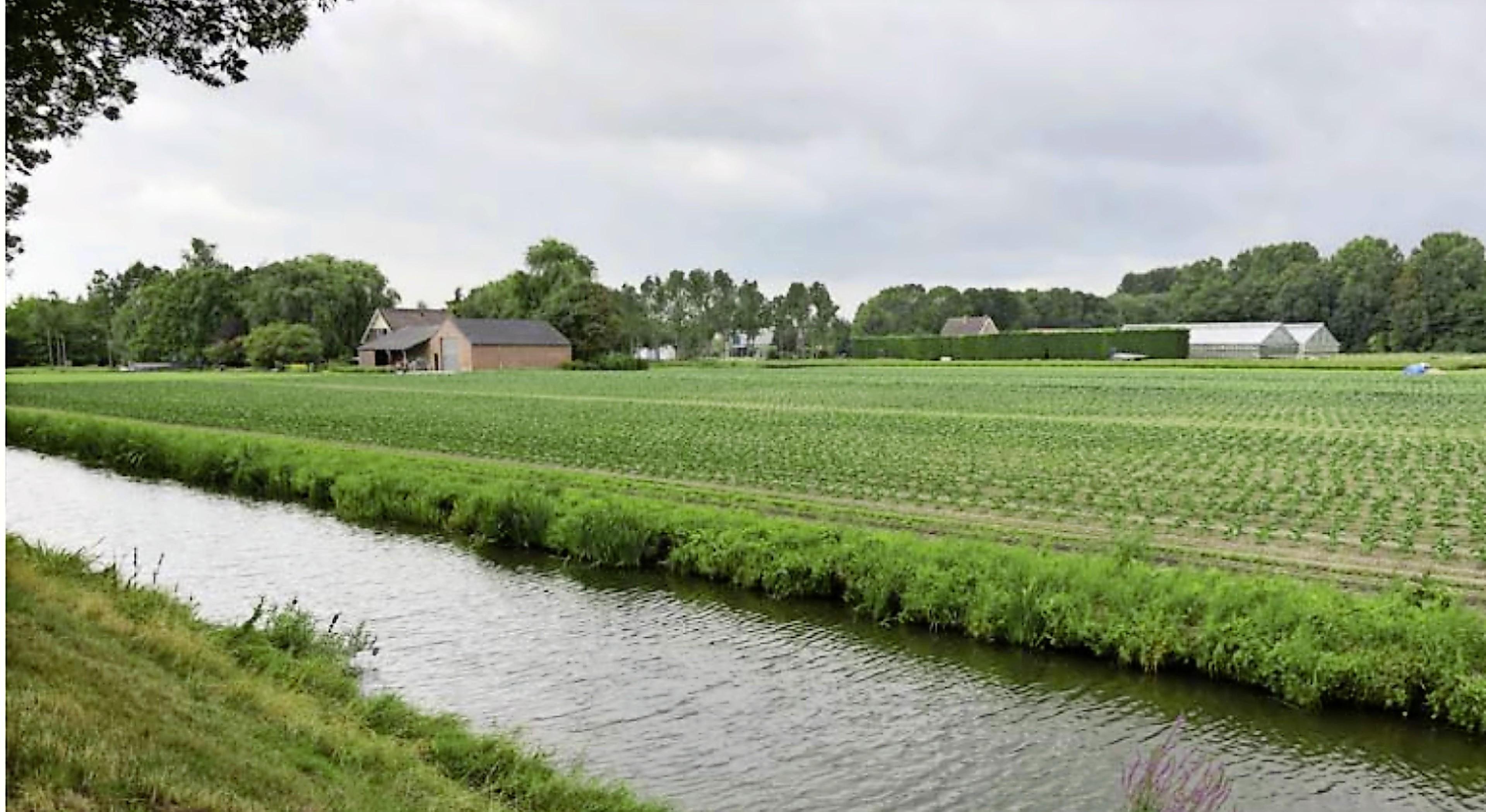 Familie Zwaan dringt aan op snelle uitwerking nieuwbouwwijk Enkhuizen: 'Bedrijf gaat ten onder' - No