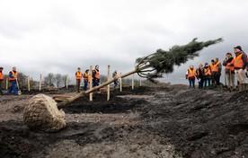 Bomen planten in herinneringsbos MH17, 18 maart 2017.