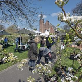 Plantjes scoren en een reuzenpanda knuffelen in de Haarlemmer Kweektuin