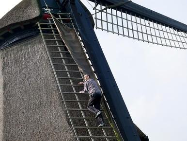 Molenaar Eric Zwijnenberg klimt in de wieken van de Wimmenumermolen.