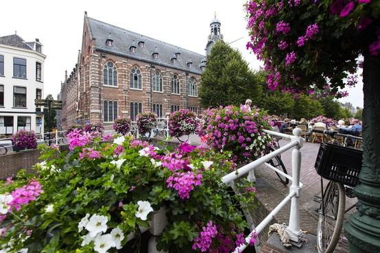 Universiteit Leiden krijgt geen ombudsman voor personeel