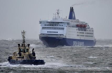 Chauffeur die vijftien mensen in zijn truck ontdekte bij de ferry in IJmuiden is vrijgelaten en niet langer verdacht