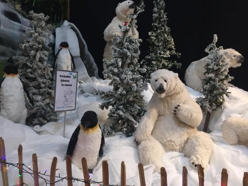 Zingende ijsberen en de mooiste kerststal [video]