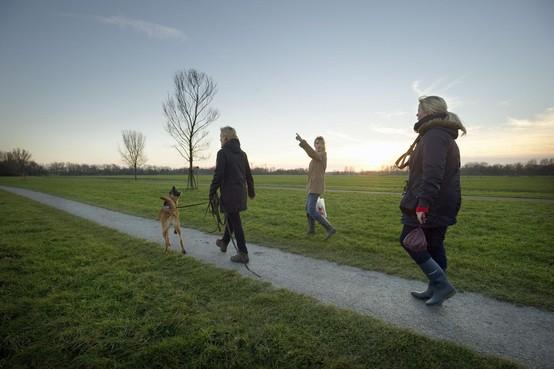 Een complete revisie voor het Leidse polderpark Cronesteyn