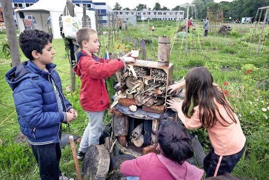 Ecofest aan rand van Haarlem-Schalkwijk smaakt naar meer