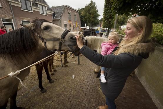 'Problemen bestaan niet tijdens Valkenburgse Paardenmarkt'