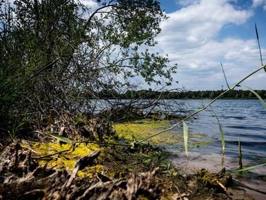 Watertekort in Zuid- en Oost-Nederland
