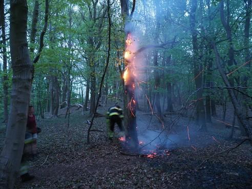 Code hoog geldt bij natuurbrand in Veiligheidsregio Kennemerland