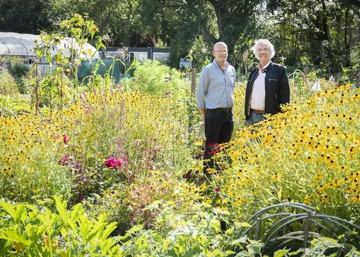 Al 95 jaar tuinieren in groene oase in Haarlem-Noord