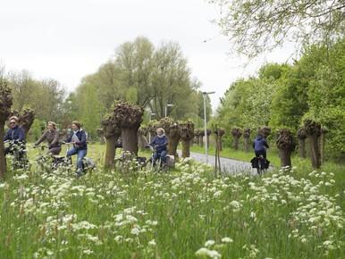 Over Veerpolderpad had Leiden informatiever moeten zijn