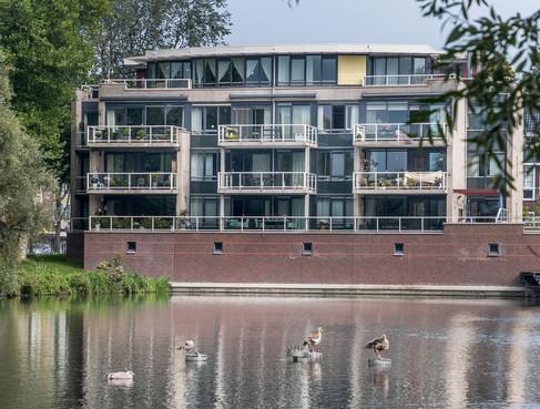 Bewoners Alkmaarse Rederijkershof missen hun fontein