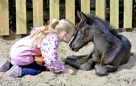 Lizz Braas, dochter van Kim en Roel, en het knuffelveulen geven elkaar kopjes en kusjes.