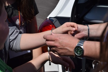 Man uit Schagen aangehouden voor beleggingsfraude: auto's, goud, geld en schilderijen in beslag genomen