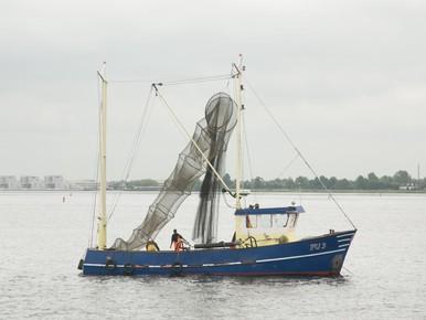 IJsselmeervissers willen compensatie voor zandwinning en windmolens
