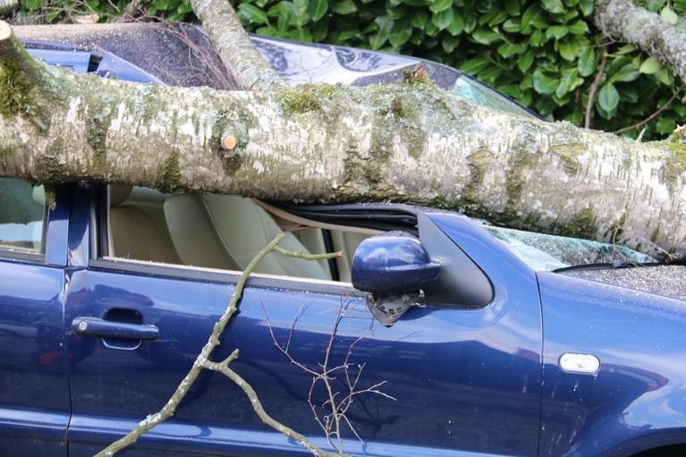 Afgebroken tak valt op geparkeerde auto's in Bussum