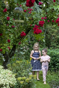 Hoor, voel, ruik en proef het leven in de tuin