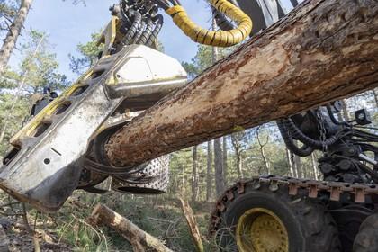 'Europa, schrap subsidies op maken van natuur'