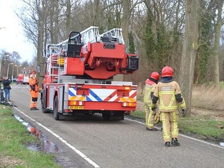 Tien bomen mogelijk gekapt door storm in Krommenie