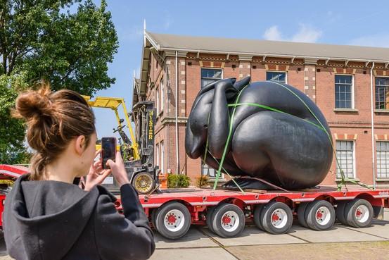Angsthaas komt logeren in Zaandams cultuurcentrum Het Hem