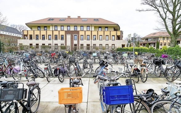 Heibel om betonnen schoolfietsveld in Bergen: buren willen hun oude tuinaanzicht terug