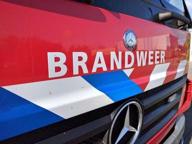 Geen treinen tussen Leiden en Haarlem wegens bermbrand
