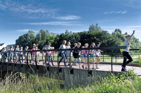 Honderden wandelaars avondvierdaagse in Nieuw-Vennep