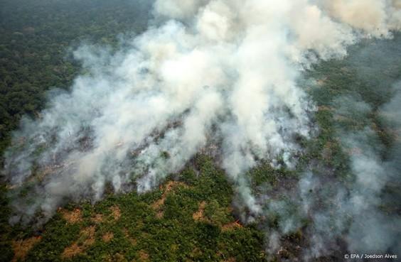 Brazilië maakt 8 miljoen vrij voor bosbranden