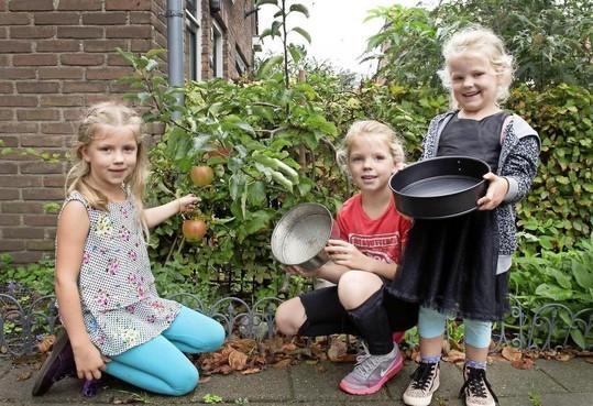 Heel Velsen bakt: precies 6 appels voor 2 taarten