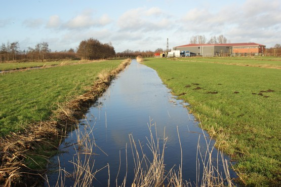 Bodemdaling kost Gooi en Vechtstreek tot 2050 100 miljoen; Verzakking veengronden vraagt om actie