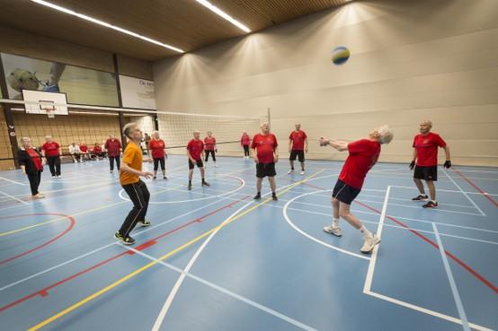 Harttrimverenigingen zien aantal leden hard teruglopen: 'Waar zijn die sportende lotgenoten?'