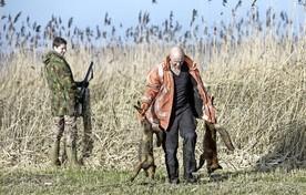 Twee doodgeschoten vossen bij de rietlanden niet ver van de Stichtse brug.