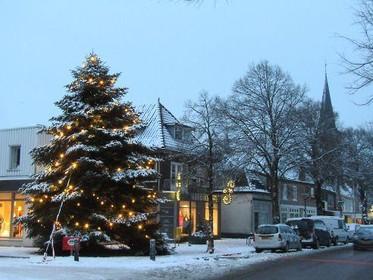 Dorpsfeest Driehuis zoekt een kerstboom