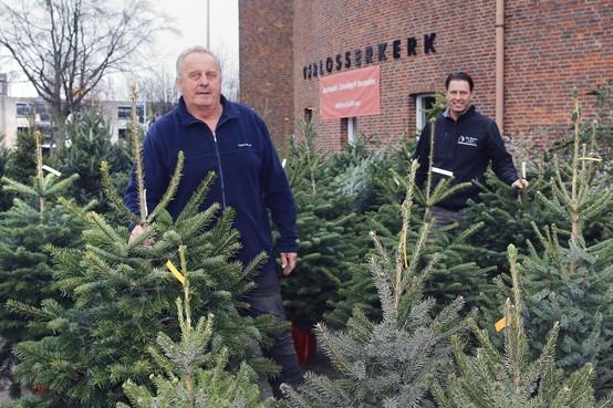 Kerstbomenverkoper Verkerk moest na 43 jaar plots verhuizen