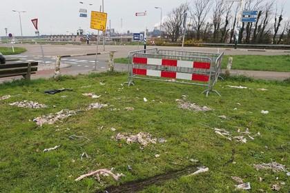 'Demonstratievak anti-zwartepiet' in IJmuiden onklaar gemaakt en met rotte vis besmeurd