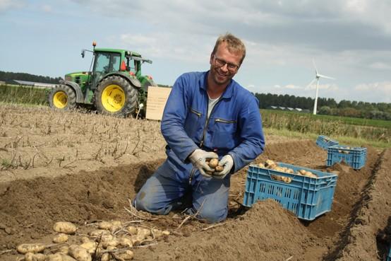 Opleving zomer zorgt voor piek in oogstwerkzaamheden akkerbouwers Wieringermeer