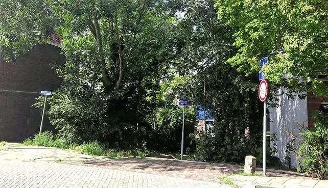 Omwonenden Hogendijk willen 'bos' behouden