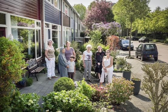 Buurt boos over rekening: gemeente Haarlem wil opeens drieduizend euro voor voortuinen in Geneesherenbuurt