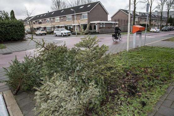 Kerstboom uit Zaanstad gaat toch in de fik