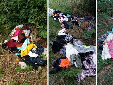 Bosjes vol gedumpte kleding langs Watering Zaandam