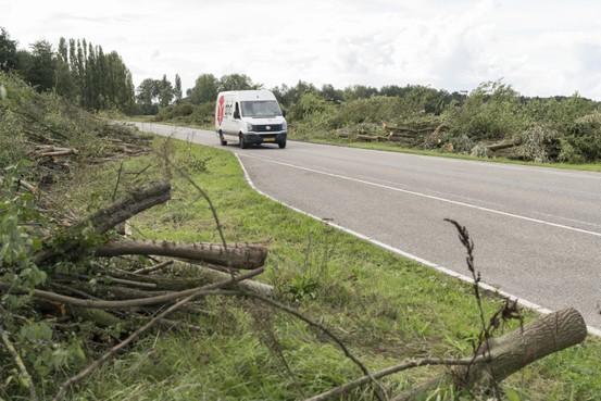Rekensom voor bomen Rijnlandroute niet rooskleurig