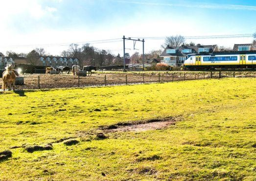 Omwonenden naar rechter over veiligheid van weg langs spoor Santpoort-Zuid